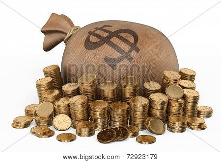3D Sack Of Money And Coins
