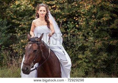 Bride On Horse