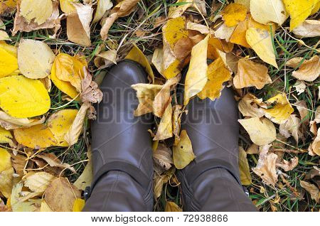 Pair Of Boots In Autumn