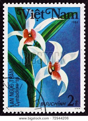 Postage Stamp Vietnam 1984 Cymbidium, Orchid