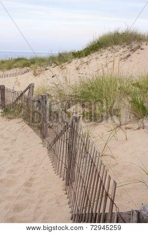 Dunes in Provincetown,Massachusetts