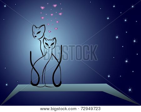Enamoured Cats Against Dark Blue Night Sky