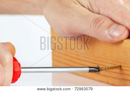 Tightening screws in a wooden block with a screwdriver close up