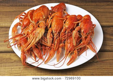Tasty Boiled Crayfishes On A White Plate