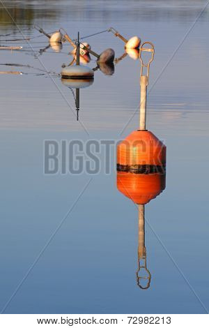 Red Buoy In Sea