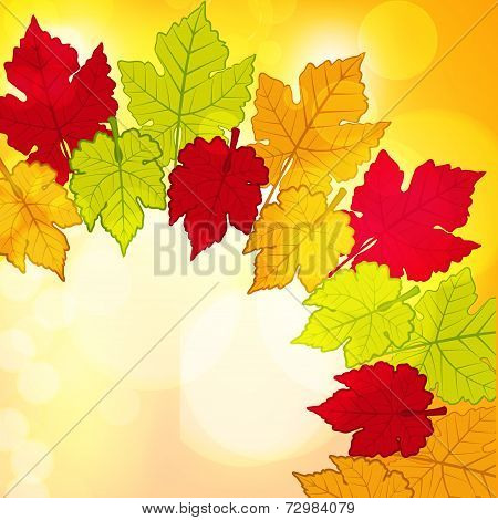 Autumn Leaf Border Background2