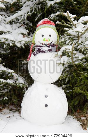 Snowman wearing earflap beanie