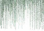 stock photo of encoding  - green matrix code isolated on white background - JPG