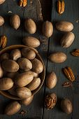 pic of pecan  - Raw Organic Whole Pecans Ready to Eat - JPG