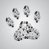 stock photo of animal footprint  - various black and gray animal footprints eps10 - JPG