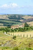 stock photo of senesi  - Crete senesi characteristic landscape in Val d - JPG