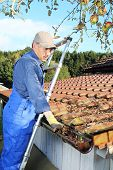 stock photo of gutter  - A Gardener cleaning a rain gutter from leaves