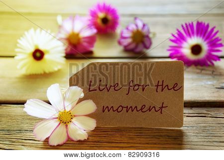 Sunny Label Life Quote Live For The Moment With Cosmea Blossoms