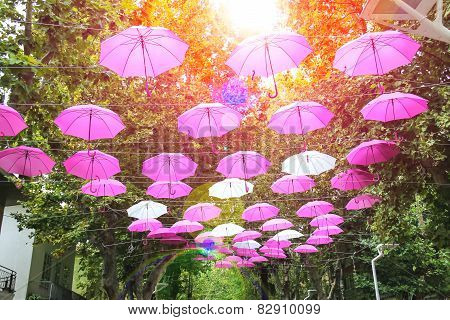 Pink And White Umbrellas Decorate Streets In The Resort Town Bellaria Igea Marina, Rimini, Italy