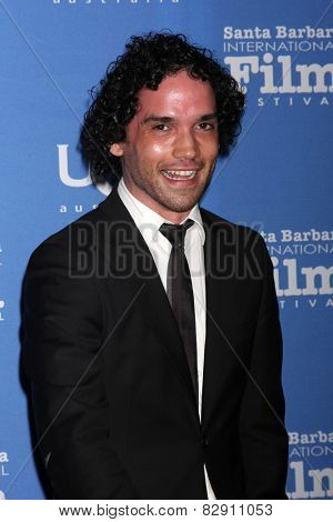 SANTA BARBARA - JAN 27:  Reece Ritchie at the Santa Barbara International Film Festival - US Premiere of