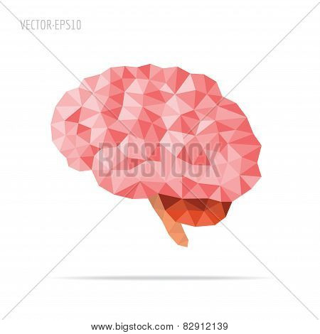 Brain Faceted