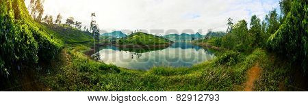 Panorama of the tea plantations at sunrise with reflection in the lake. Sri Lanka