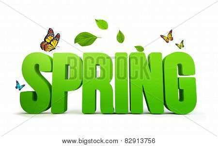 3D Rendered Spring Word Isolated