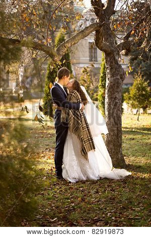 Groom Hugging Cute Bride Under Tree At Autumn Park