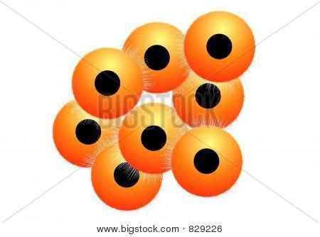 Cells 26