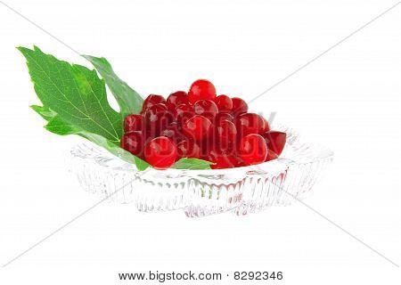 Image Of Wild Berry