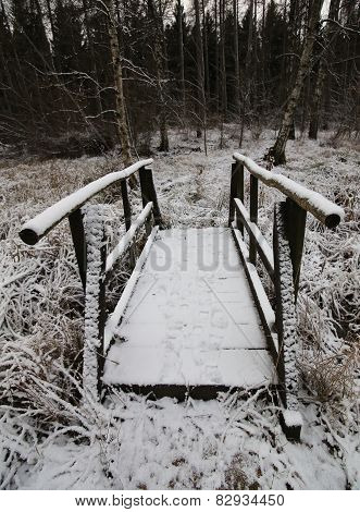 Snow Bridge