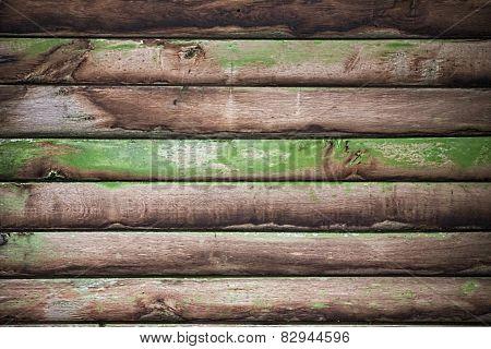Lichen Lath Texture