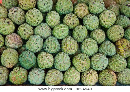 The Custard Apple Fruit