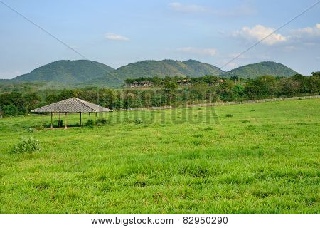 Horse Stable In Front Of Hills
