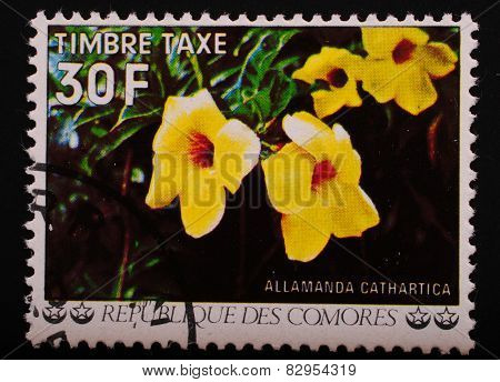 Comoros - Circa 1977: Postage Stamp Printed Comoros Shows Image Of A Flowering Shrub With Large Yell