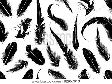Seamless feathers