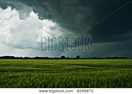 Thundery clouds over a field