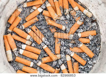 Many Cigarette Ends In Plastic Pot