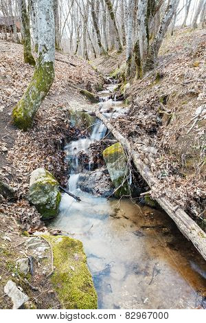 Scenic With Stream In Mountain Woods In Spring