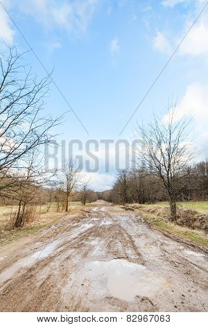 Dirty Country Road With Puddles In Early Spring