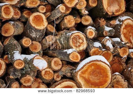 Stack Of Fire Woods