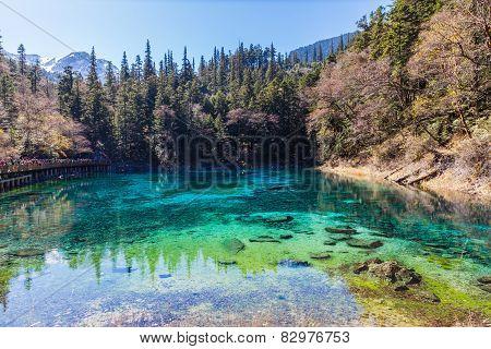 Beautiful Pond In Jiuzhaigou National Park