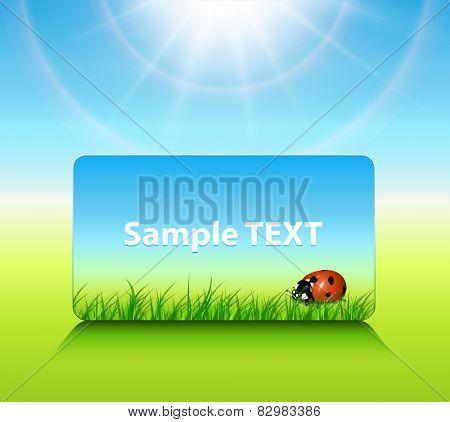 Sunny background spring or summer, vector illustration.