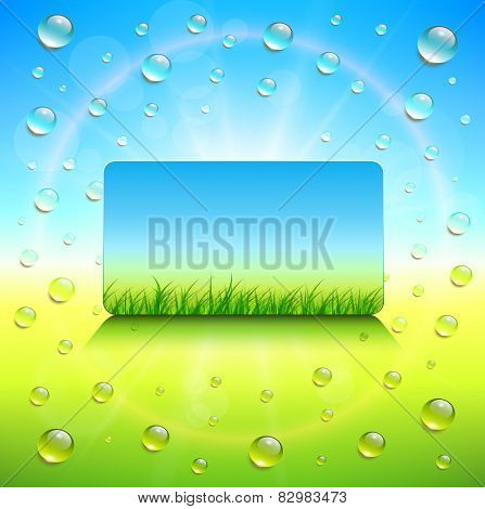 Sunny background, with vector grass and dews water drops.