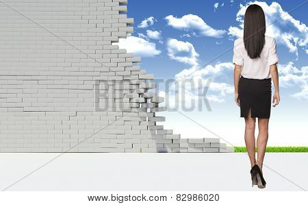 Beautiful businesswoman in shirt and skirt. Rear view. Dilapidated brick wall, green meadow with sky