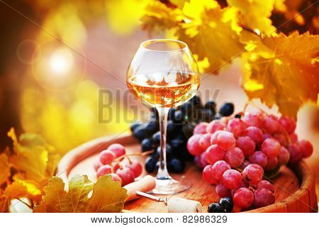 Wineglass and grape on wooden barrel on grape plantation background