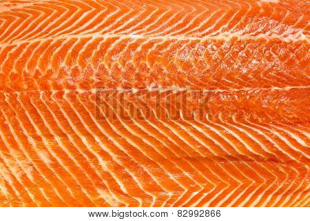 meat fish salmon