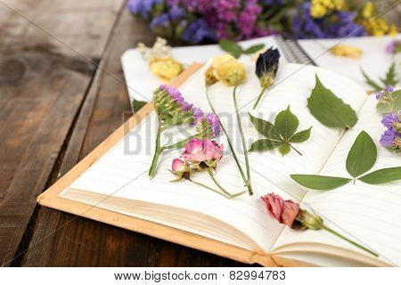 Composition with flowers and dry up plants on notebooks on table close up