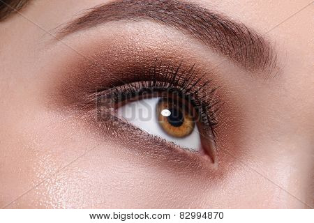Glamour brown eye make up close