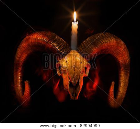 Skull Of Ram With Lighted Candle - Taro