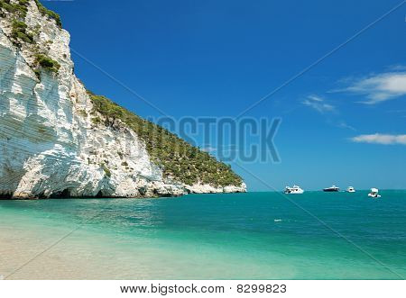 Coastline Landscape