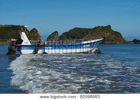Penguin Boat
