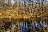picture of dnepropetrovsk  - Parks - JPG