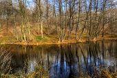 stock photo of dnepropetrovsk  - Parks - JPG