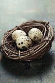 image of quail  - Quail easter eggs in a nest on wooden table - JPG